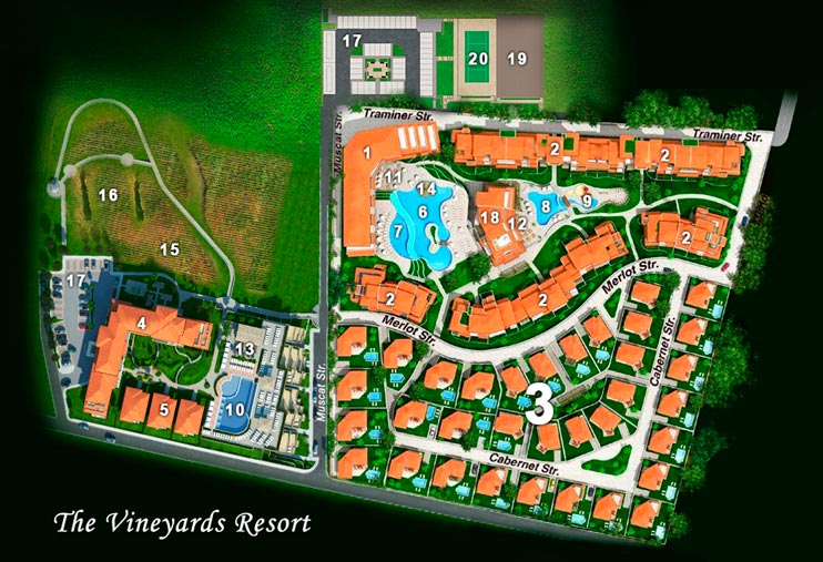 vineyards panorama plan